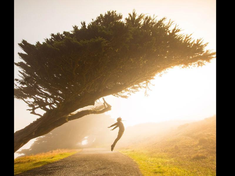 朝30分の習慣が人生を変える「早朝オンライン瞑想」の画像