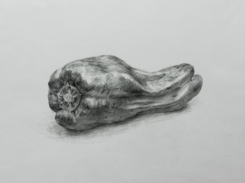 【オンライン受講】初めての鉛筆デッサンNo.1~No.5の画像