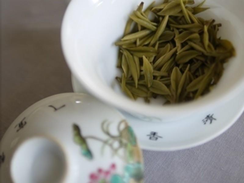 中国茶知的好奇心がとまらないシリーズ②注目の白化緑茶を学ぼう①の画像
