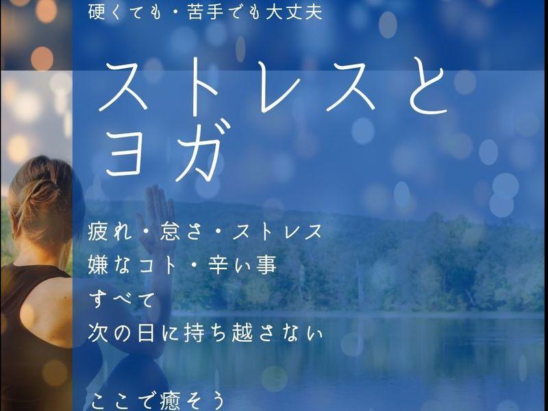 夜ヨガ【オンラインZOOM】やさしい呼吸とヨガ ワンコイン500円の画像