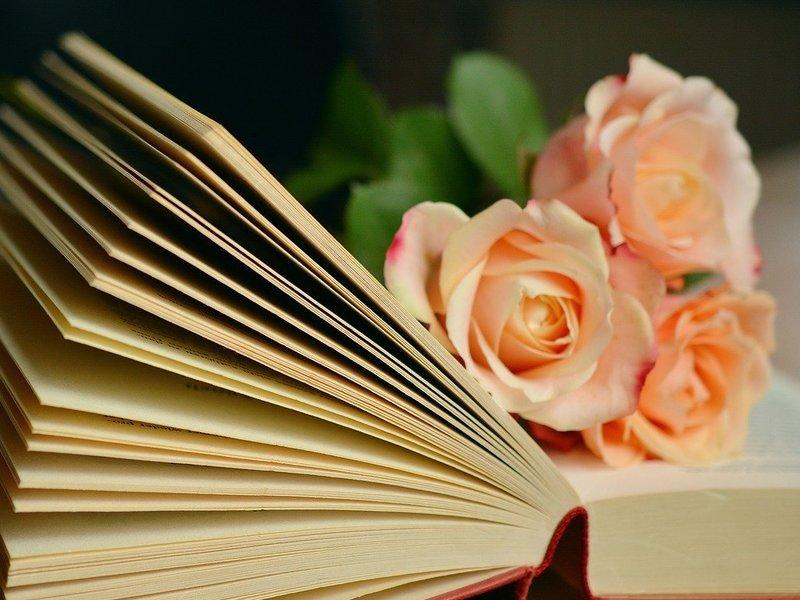 読書大嫌いにお勧め✨超入門の楽しみながらの読書会💛の画像