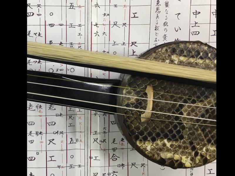 オンラインで個人レッスン!初心者でも弾ける「三線・沖縄胡弓」講座の画像