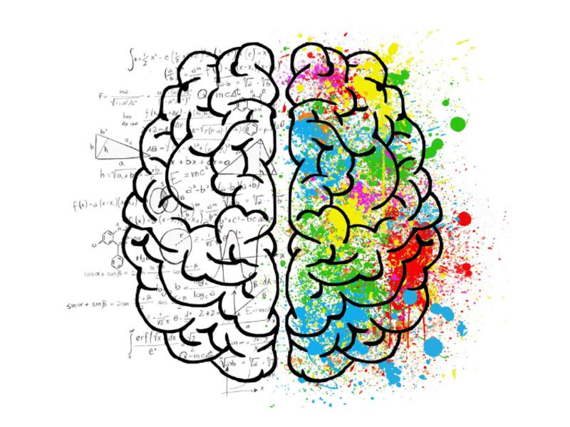 コミュニケーションの能力UP!利き脳診断の活用法セミナーの画像
