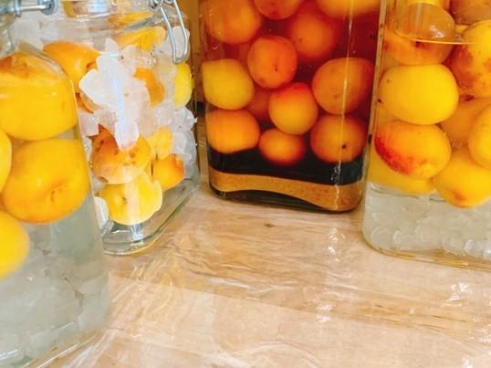 酵素たっぷりのおいしい梅酒3種類を作る楽学講座♡の画像