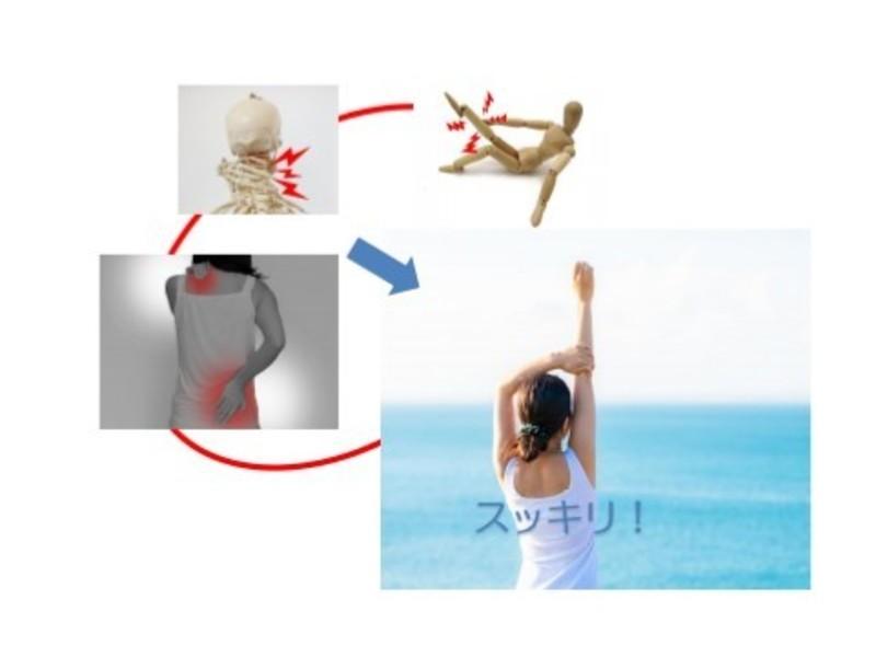 関節や筋の痛みからの解放!若返り背骨体操/自宅でかんたんセルフケアの画像