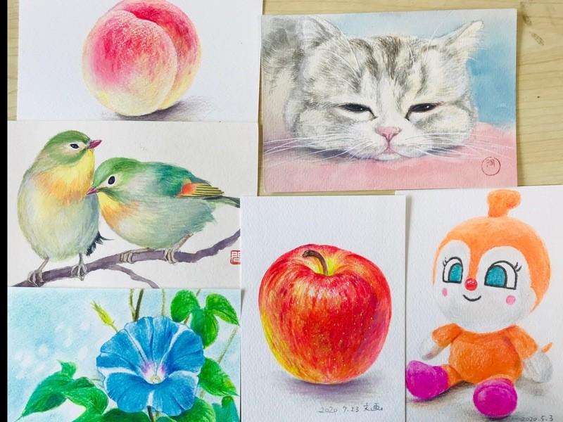 2時間で描ける!色鉛筆だけで本格的に学ぶ絵画入門の画像