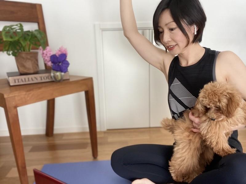 身体を変える!動きの原点を学ぶ体幹系トレーニング【オンライン】の画像