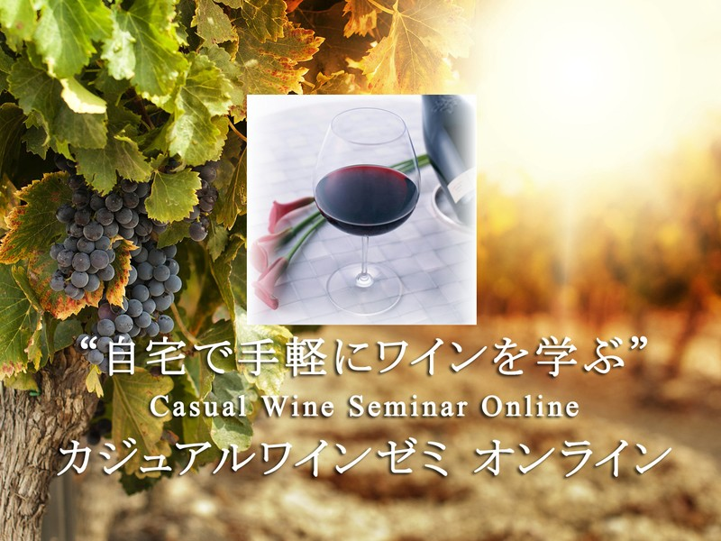 【オンライン】12種のワインが届くワインの基礎を学ぶ初級3回講座の画像