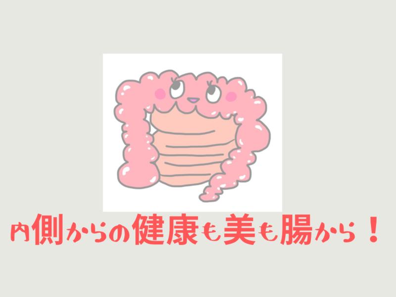 【美腸食材で作るあなたの食事プラン講座】の画像