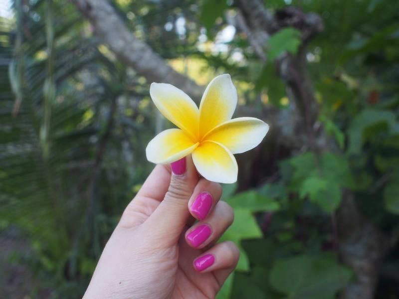 【週末】バリ島からお届け!しっかり動いてリフレッシュするヨガの画像