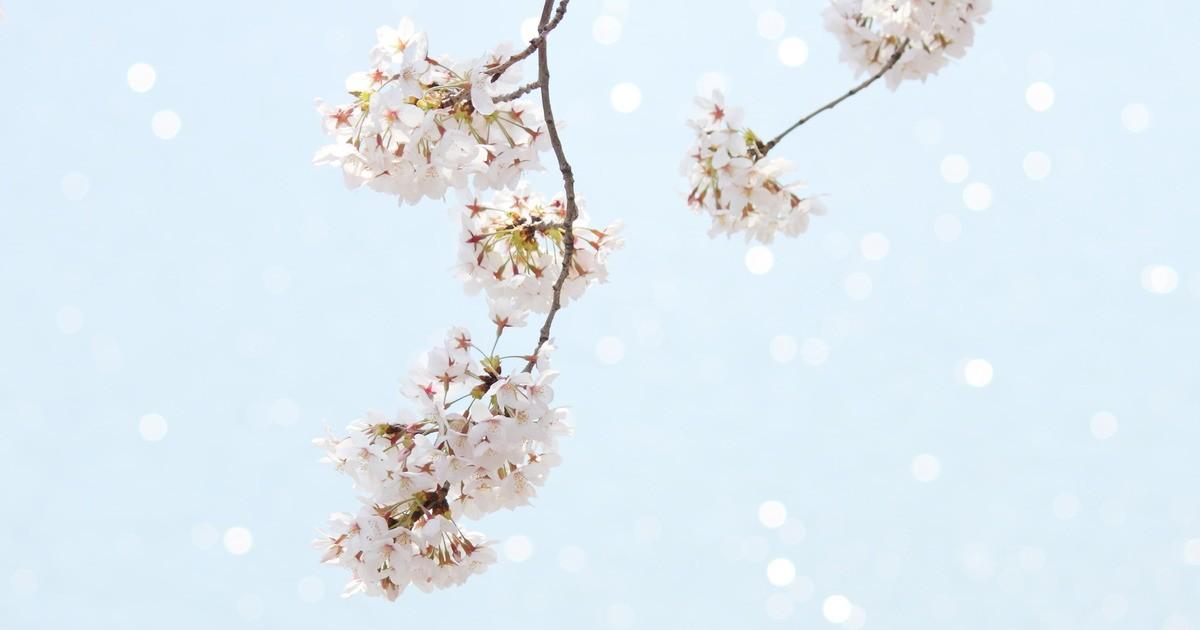 武藤 裕也の教室ページの見出し画像