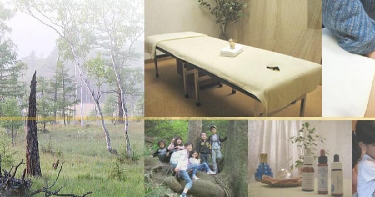 園山 阜稔の教室ページの見出し画像