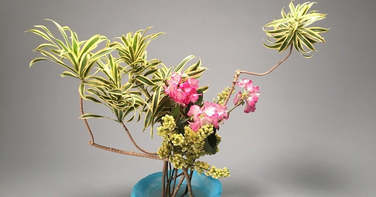高野 綵花の教室ページの見出し画像