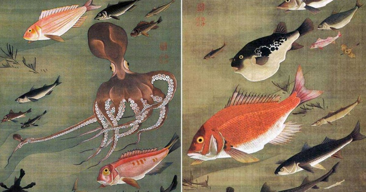 Kou Shibuichiの教室ページの見出し画像