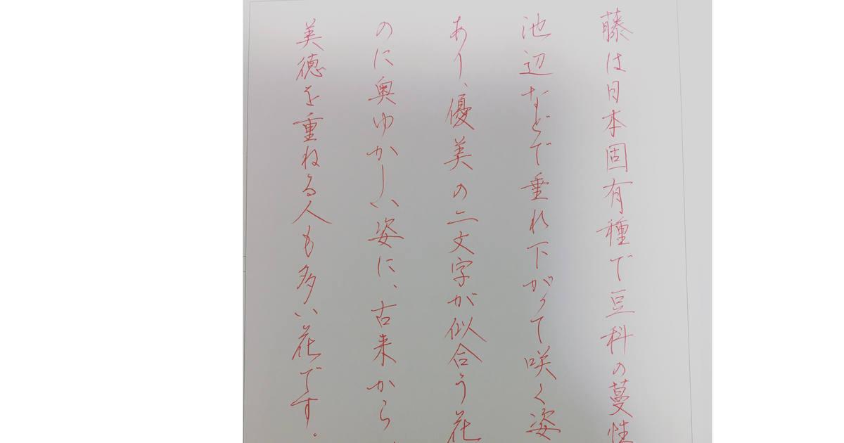 曽山 洋子の教室ページの見出し画像