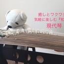 癒しの和の音で琴遊び♪  岡村流現代琴 青木教室の講座の風景