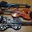 大人のためのバイオリン教室の講座の風景