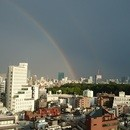 一般社団法人 日本免疫カウンセリング協会の開催する講座の風景