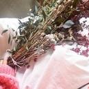 season flower lessonの講座の風景