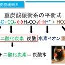 簡単に分かる血液ガス・酸塩基平衡講座の講座の風景