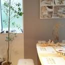 [資格が取れる]お菓子教室 hanano 松戸教室の講座の風景