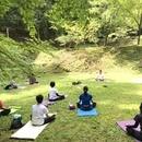 Palmas Yogaの講座の風景