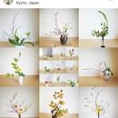 生け花教室 Small Forestの講座の風景
