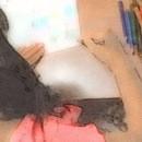 色とかたち美術の教室の講座の風景