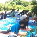 糸島・甘酒ファスティング施設『セルラボ』の講座の風景
