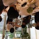 コーヒー教室の講座の風景