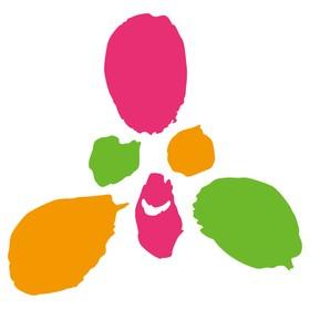リガーレ・カイロプラクティックの団体ロゴ
