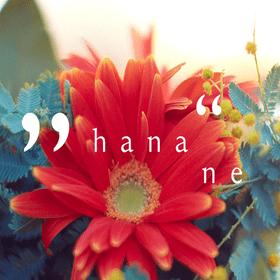 hananeフラワーデザインレッスンの団体ロゴ