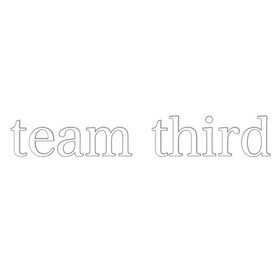 team thirdの団体ロゴ