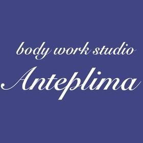 body work studio  Anteplimaの団体ロゴ