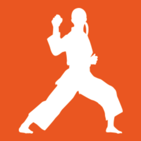 ビジョン空手スクールの団体ロゴ