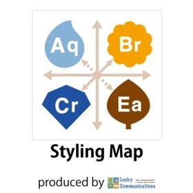 次世代の似合わせメソッド「スタイリングマップ」の団体ロゴ