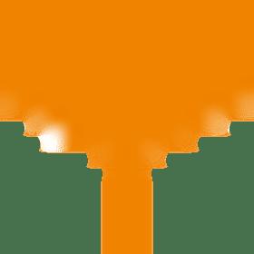 株式会社ブルームコンセプトの団体ロゴ