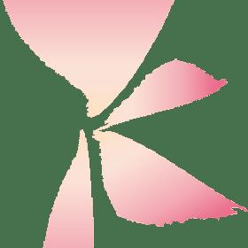 一般社団法人日本かしこめし協会の団体ロゴ