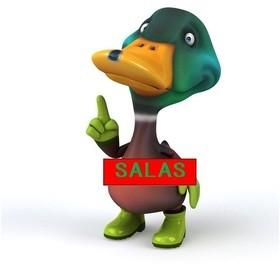 サラスおもてなし・英語ボランティア養成講座の団体ロゴ