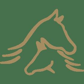 株式会社Strainの団体ロゴ