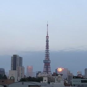 田中 太郎のプロフィール写真