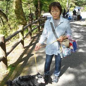 加藤 美代子のプロフィール写真