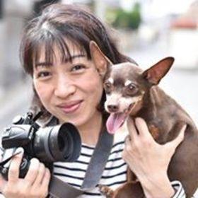 河村 昌美のプロフィール写真