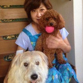 永島 明理のプロフィール写真