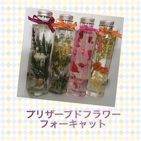 椎葉 晴菜のプロフィール写真