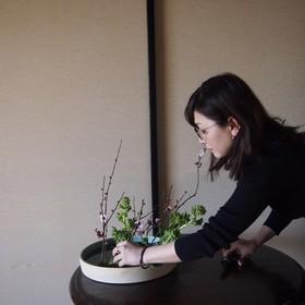 arai mayuのプロフィール写真