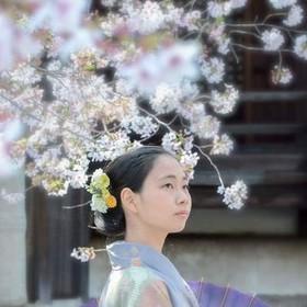Amano Tamaのプロフィール写真