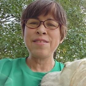 田坂 あや子のプロフィール写真