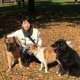 伊藤 英子のプロフィール写真